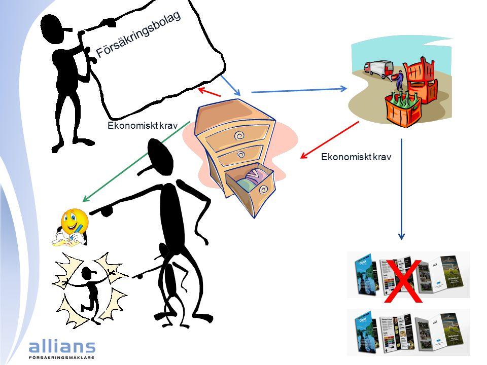 X Försäkringsbolag Ekonomiskt krav