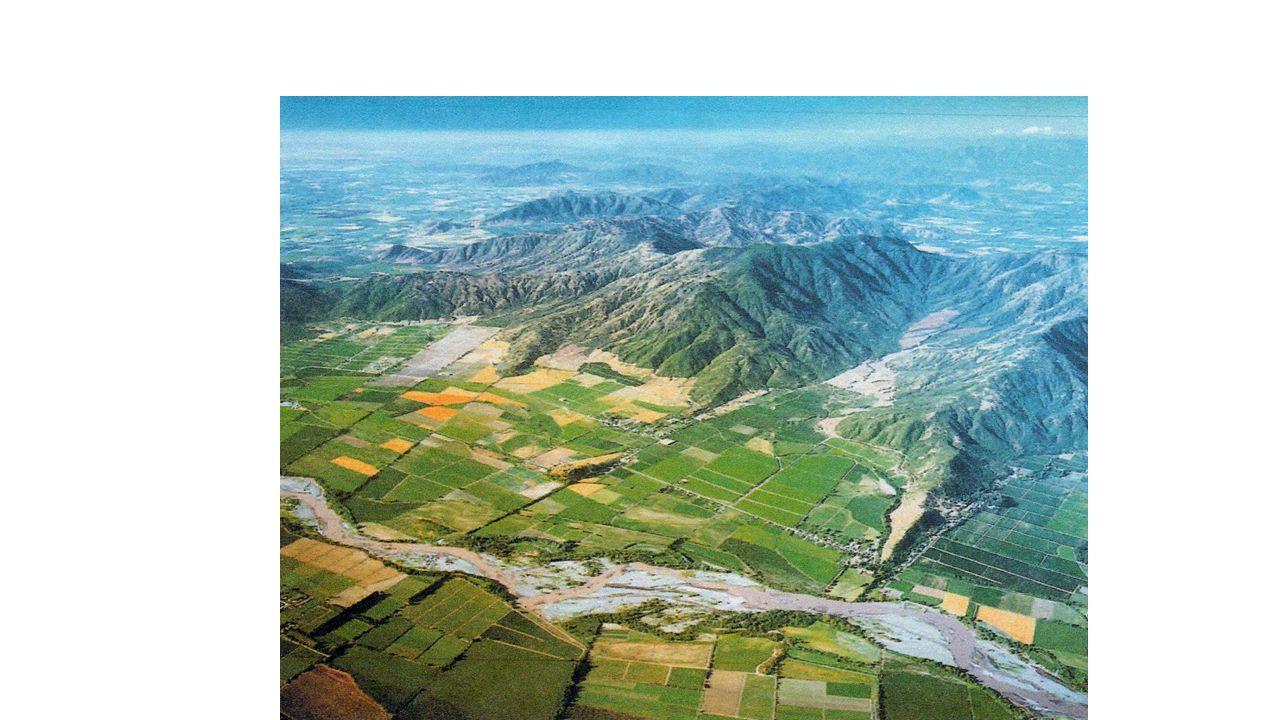Cono Sur Single Vinyard Block 23 Riesling Vin från BioBio-dalen i södra Chile.