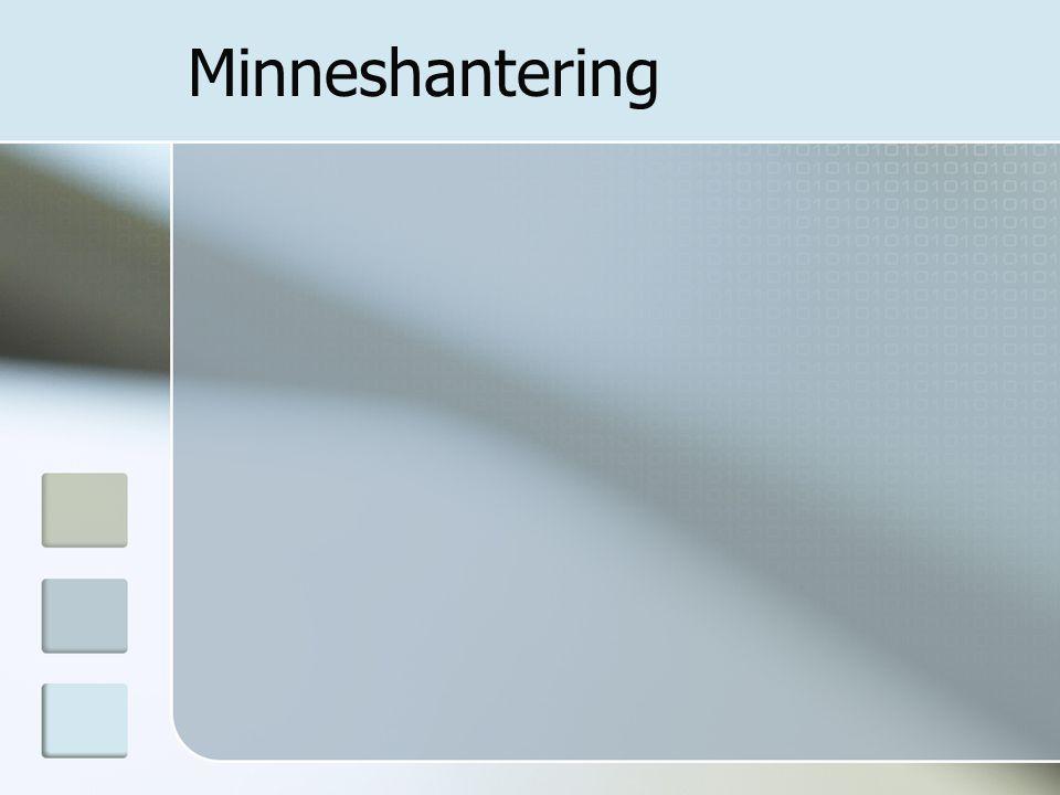 Minneshantering