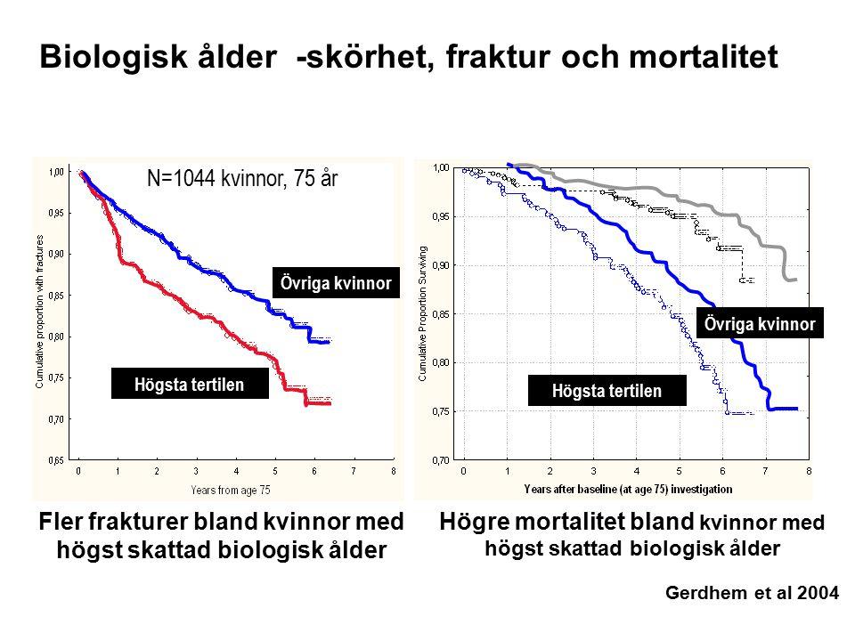 Högre mortalitet bland kvinnor med högst skattad biologisk ålder Fler frakturer bland kvinnor med högst skattad biologisk ålder Högsta tertilen Övriga