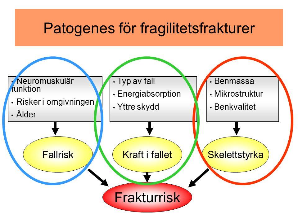 FallriskKraft i falletSkelettstyrka Frakturrisk Patogenes för fragilitetsfrakturer Benmassa Mikrostruktur Benkvalitet Typ av fall Energiabsorption Ytt