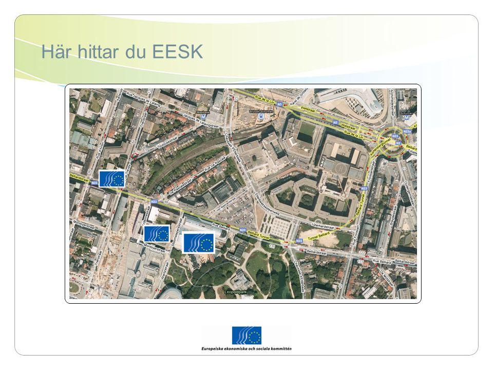 EESK:s plats bland institutionerna Europeiska kommissionen