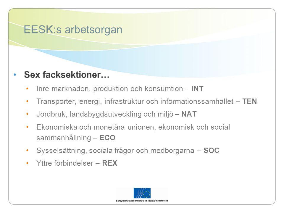 EESK:s arbetsorgan Sex facksektioner… Inre marknaden, produktion och konsumtion – INT Transporter, energi, infrastruktur och informationssamhället – TEN Jordbruk, landsbygdsutveckling och miljö – NAT Ekonomiska och monetära unionen, ekonomisk och social sammanhållning – ECO Sysselsättning, sociala frågor och medborgarna – SOC Yttre förbindelser – REX