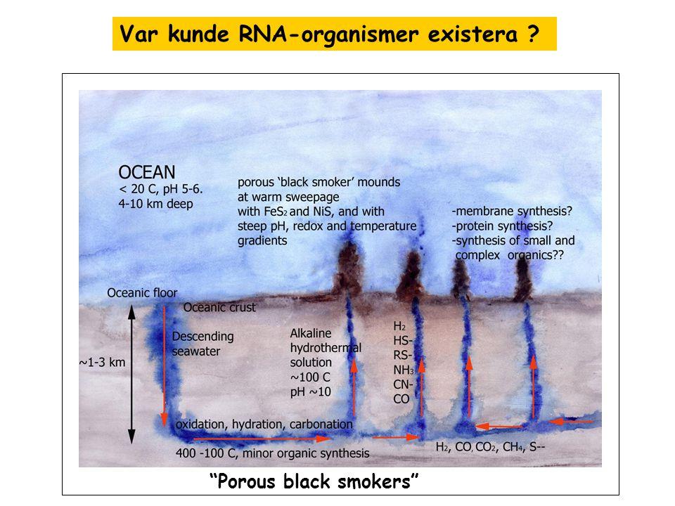 Var kunde RNA-organismer existera ? Porous black smokers