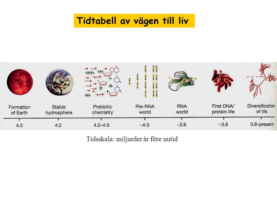 Tidtabell av vägen till liv Tidsskala: miljarder år före nutid