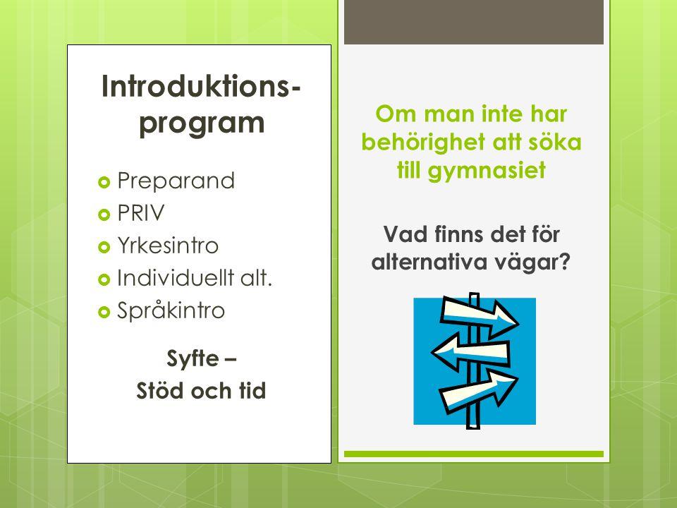 Introduktions- program  Preparand  PRIV  Yrkesintro  Individuellt alt.  Språkintro Syfte – Stöd och tid Om man inte har behörighet att söka till