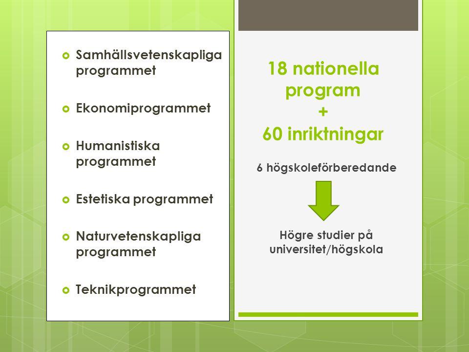  Samhällsvetenskapliga programmet  Ekonomiprogrammet  Humanistiska programmet  Estetiska programmet  Naturvetenskapliga programmet  Teknikprogra
