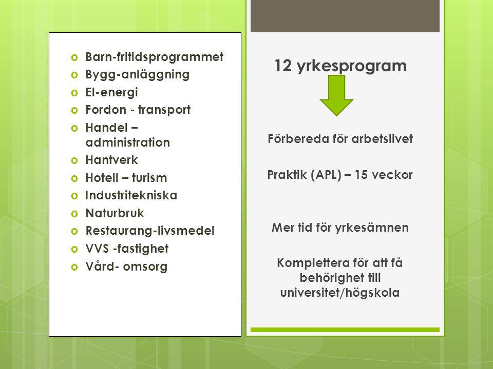  Barn-fritidsprogrammet  Bygg-anläggning  El-energi  Fordon - transport  Handel – administration  Hantverk  Hotell – turism  Industritekniska