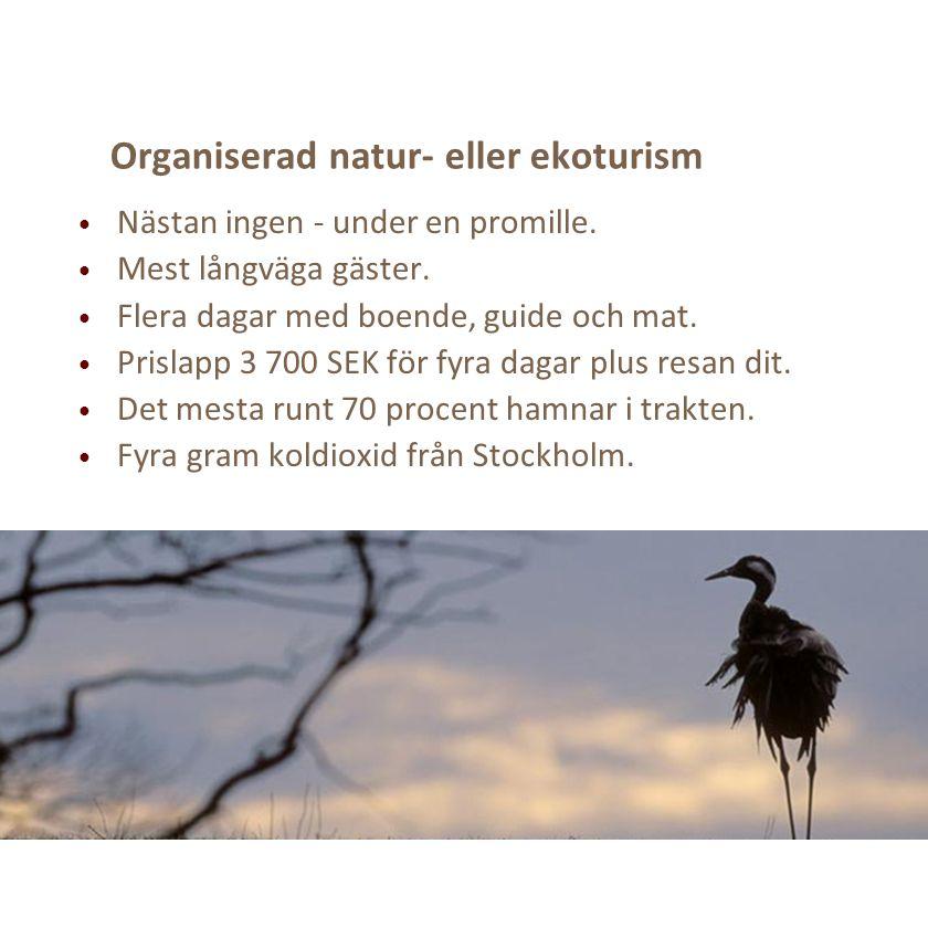 Organiserad natur- eller ekoturism Nästan ingen - under en promille. Mest långväga gäster. Flera dagar med boende, guide och mat. Prislapp 3 700 SEK f