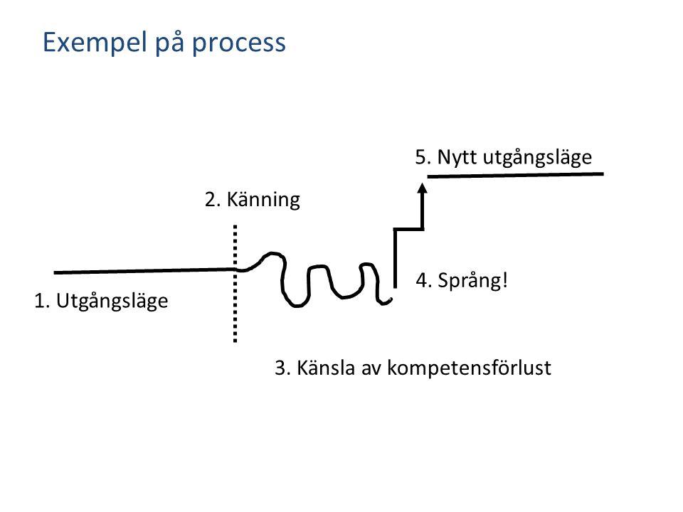 1. Utgångsläge 2. Känning 5. Nytt utgångsläge 4. Språng! Exempel på process 3. Känsla av kompetensförlust