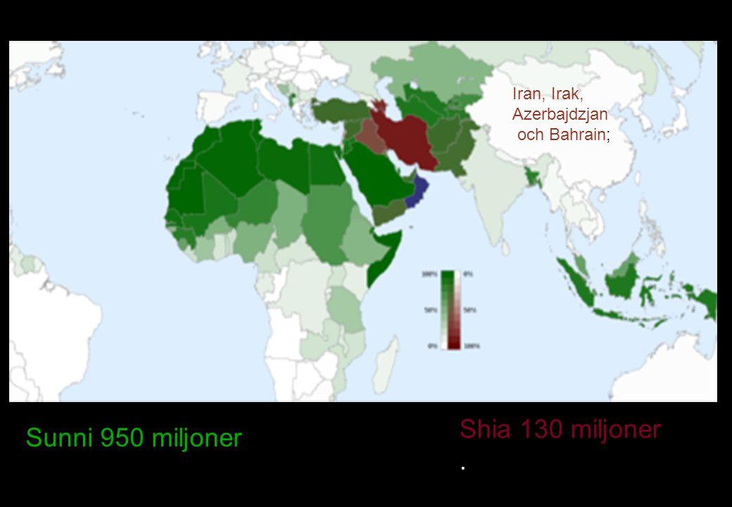 Sunni 950 miljoner Shia 130 miljoner. Iran, Irak, Azerbajdzjan och Bahrain;