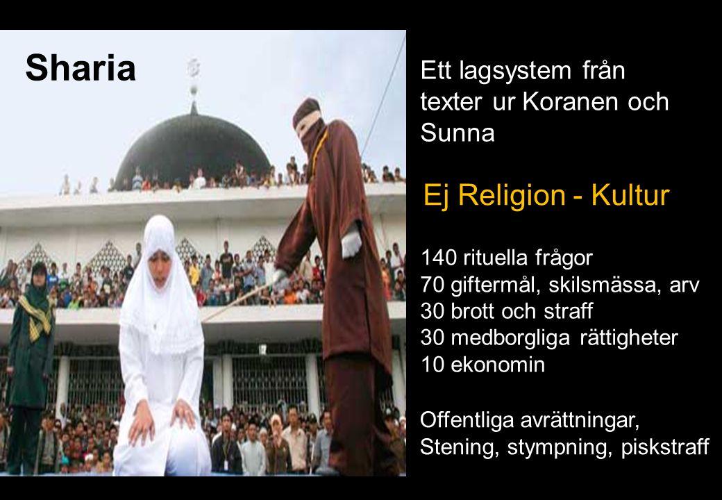 Sharia Ett lagsystem från texter ur Koranen och Sunna 22 140 rituella frågor 70 giftermål, skilsmässa, arv 30 brott och straff 30 medborgliga rättighe