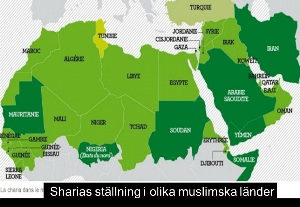 Sharias ställning i olika muslimska länder