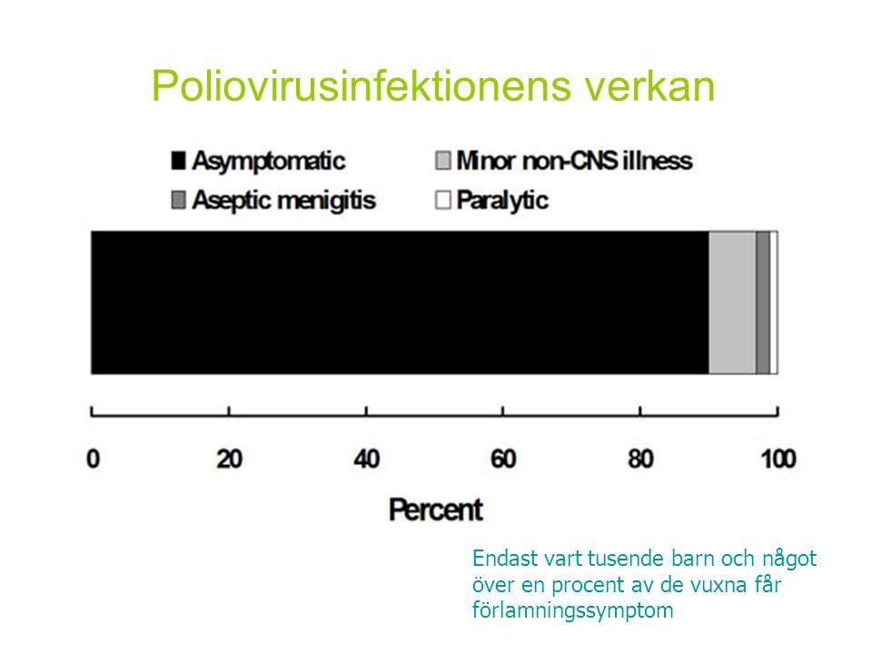 Poliovirusinfektionens verkan Endast vart tusende barn och något över en procent av de vuxna får förlamningssymptom
