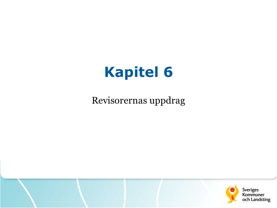 Kapitel 6 Revisorernas uppdrag