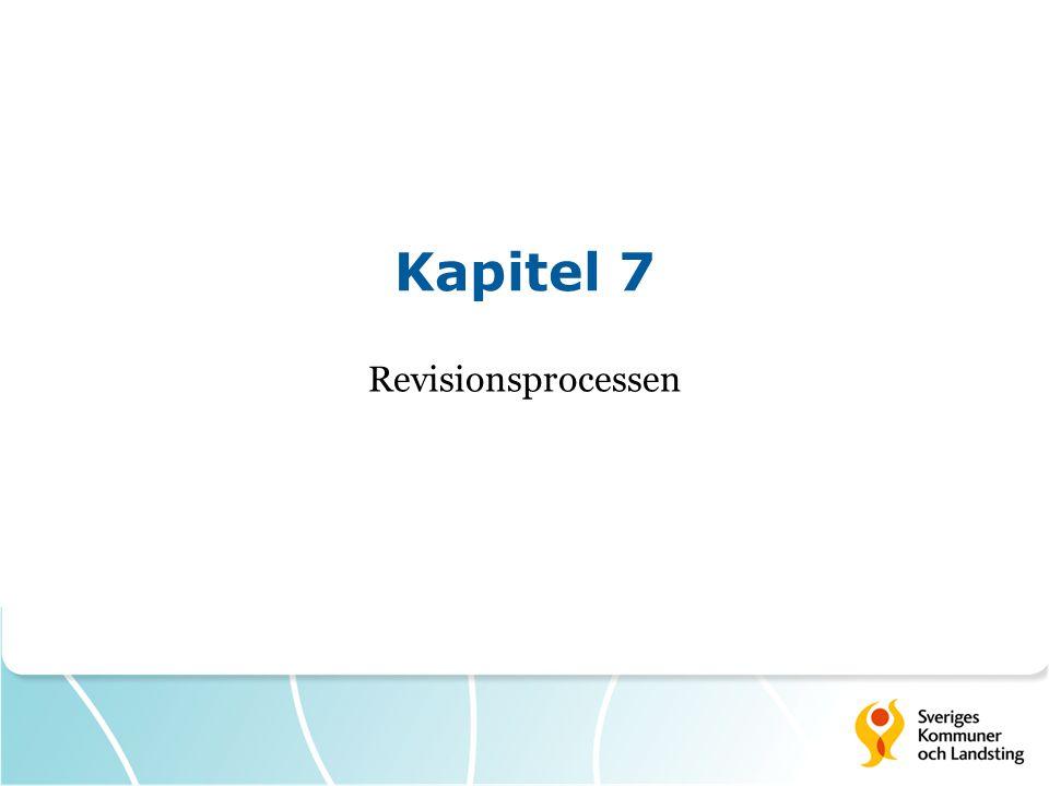 Kapitel 7 Revisionsprocessen