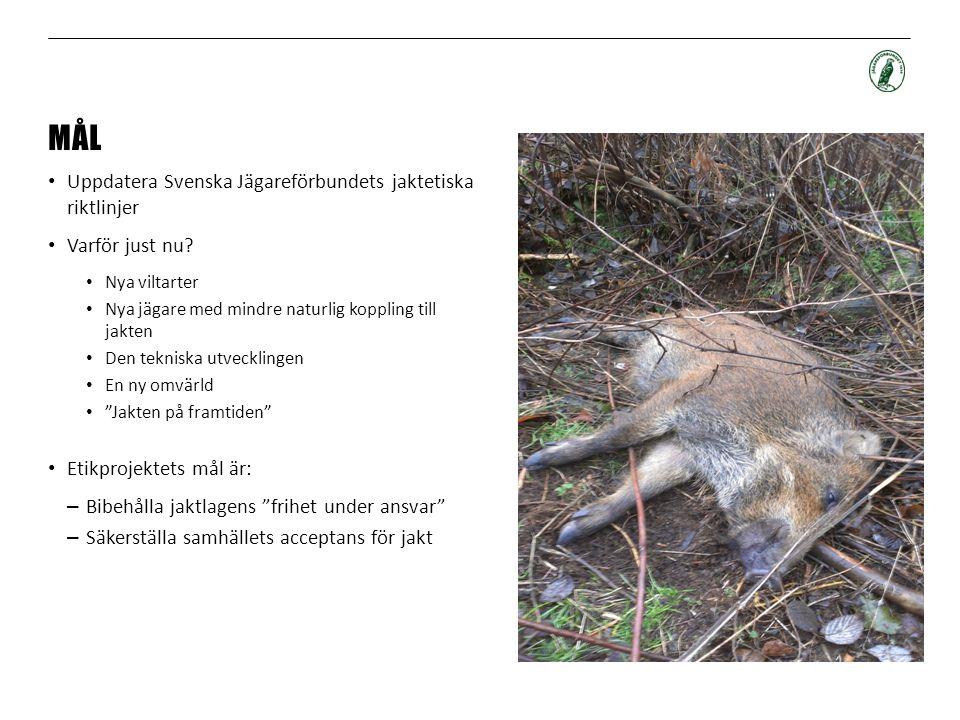 MÅL Uppdatera Svenska Jägareförbundets jaktetiska riktlinjer Varför just nu? Nya viltarter Nya jägare med mindre naturlig koppling till jakten Den tek