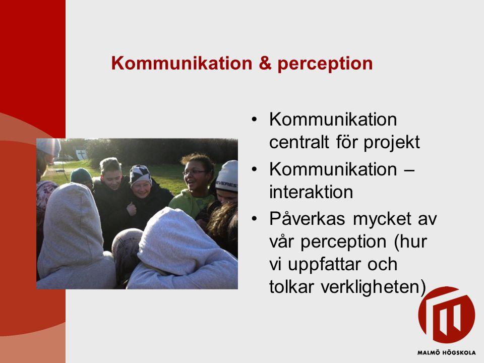 Kommunikation & perception Kommunikation centralt för projekt Kommunikation – interaktion Påverkas mycket av vår perception (hur vi uppfattar och tolk