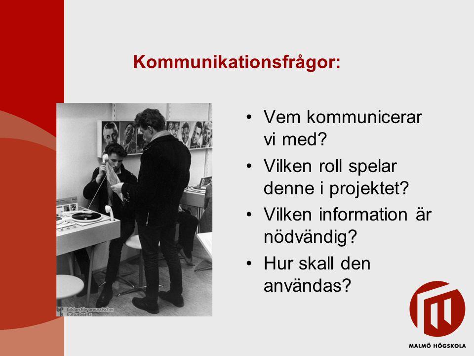 Kommunikationsfrågor: Vem kommunicerar vi med? Vilken roll spelar denne i projektet? Vilken information är nödvändig? Hur skall den användas?