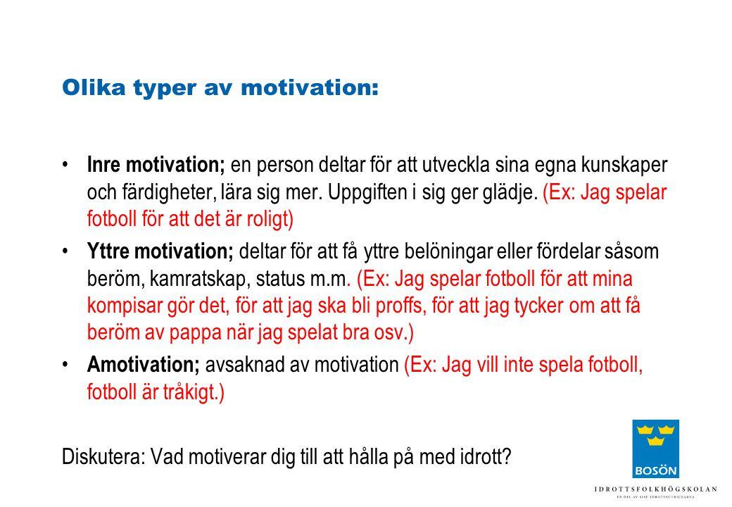 Olika typer av motivation: Inre motivation; en person deltar för att utveckla sina egna kunskaper och färdigheter, lära sig mer. Uppgiften i sig ger g