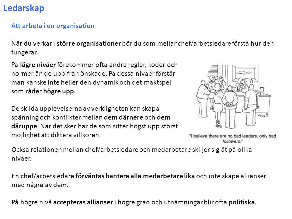 Ledarskap Att arbeta i en organisation När du verkar i större organisationer bör du som mellanchef/arbetsledare förstå hur den fungerar. På lägre nivå