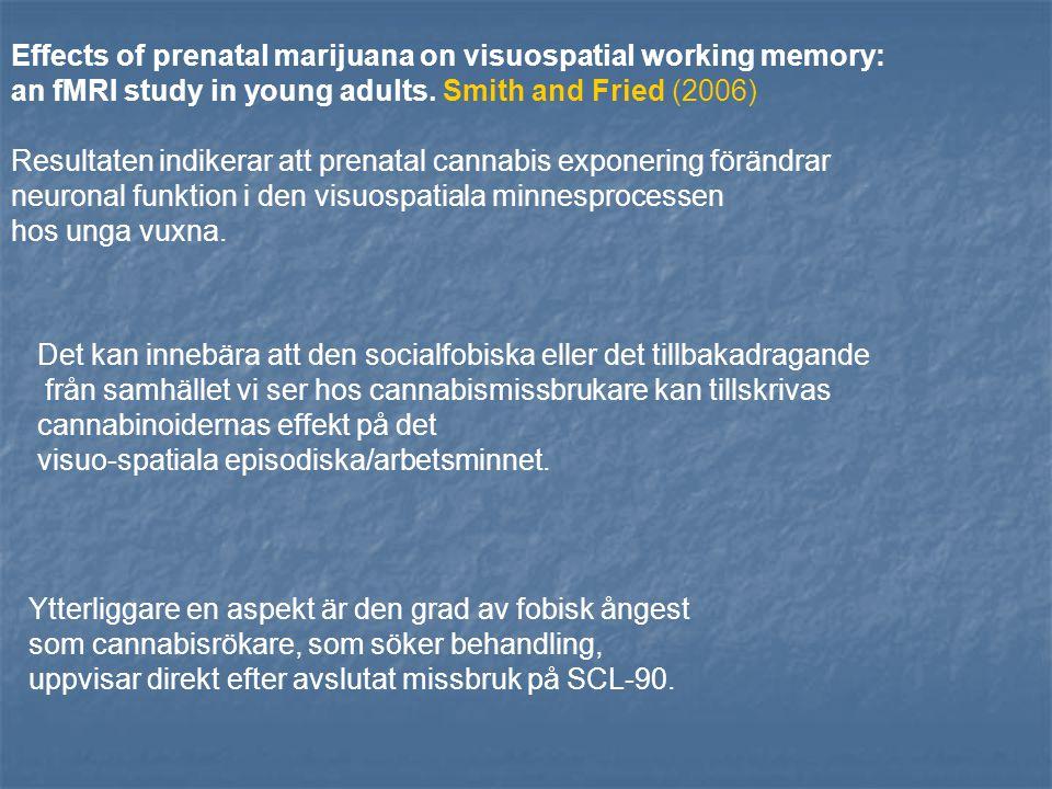 Ilan AB, Smith ME, Gevins A. (2004) Cannabisrökning kan i det akuta ruset splittra arbetsminnet och det episodiska minnet. Arbetsminnesfunktionen blir