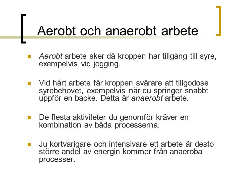 Aerobt och anaerobt arbete Aerobt arbete sker då kroppen har tillgång till syre, exempelvis vid jogging. Vid hårt arbete får kroppen svårare att tillg