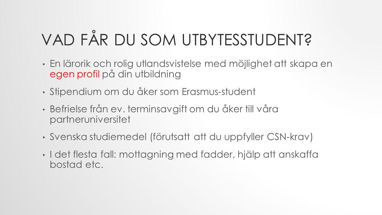 VAD FÅR DU SOM UTBYTESSTUDENT? En lärorik och rolig utlandsvistelse med möjlighet att skapa en egen profil på din utbildning Stipendium om du åker som
