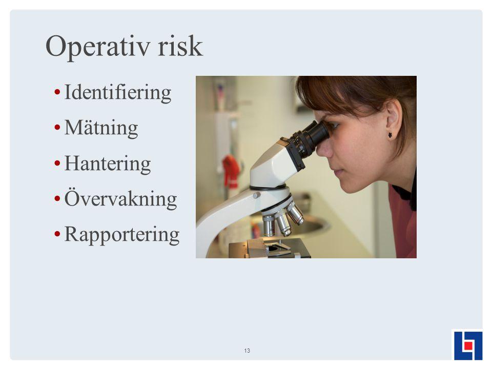 Operativ risk Identifiering Mätning Hantering Övervakning Rapportering 13