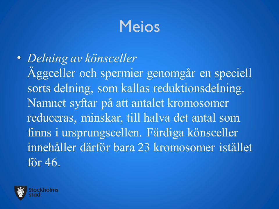 Meios Delning av könsceller Äggceller och spermier genomgår en speciell sorts delning, som kallas reduktionsdelning. Namnet syftar på att antalet krom