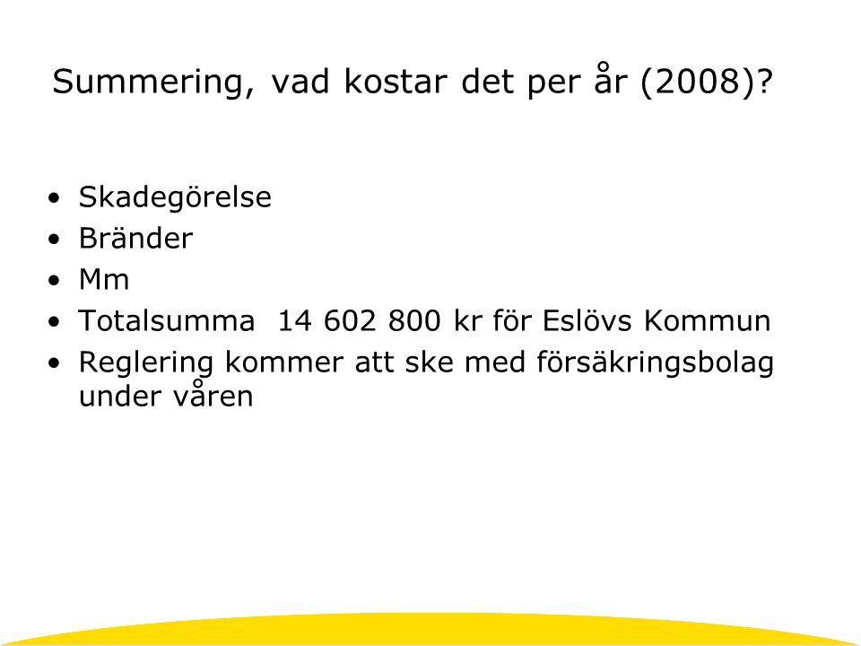 Summering, vad kostar det per år (2008).