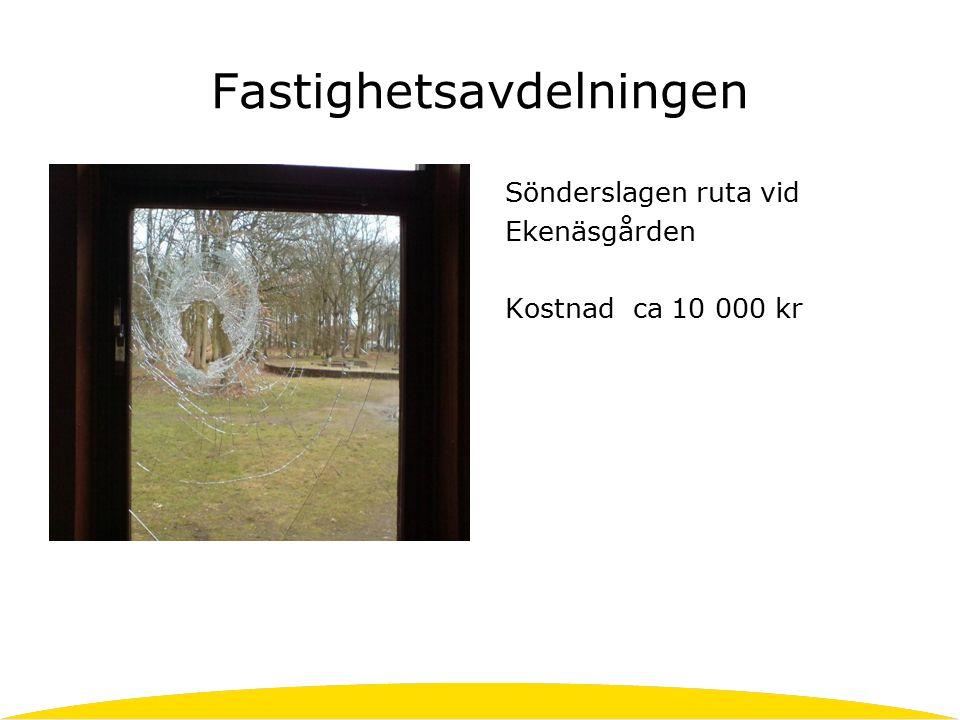 Fastighetsavdelningen Sönderslagen ruta vid Ekenäsgården Kostnad ca 10 000 kr
