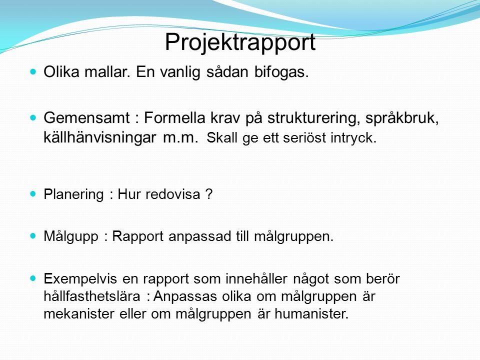 Projektrapport Bilagor: Läggs sist i rapporten Dessa har en egen inbördes sidnumrering.