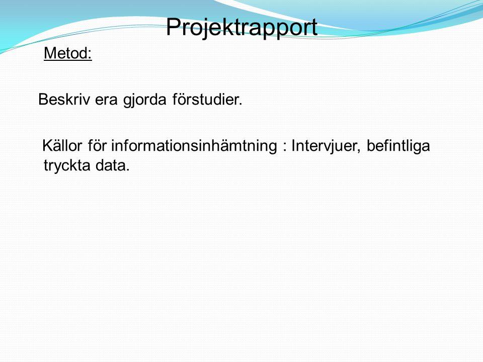 Projektrapport Metod: Beskriv era gjorda förstudier. Källor för informationsinhämtning : Intervjuer, befintliga tryckta data.