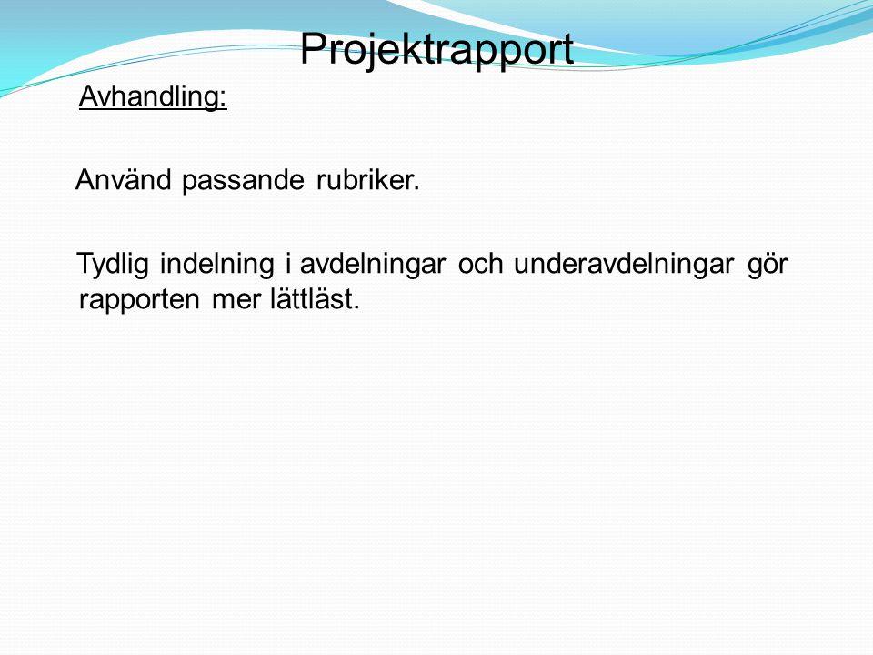 Projektrapport Avhandling: Använd passande rubriker. Tydlig indelning i avdelningar och underavdelningar gör rapporten mer lättläst.
