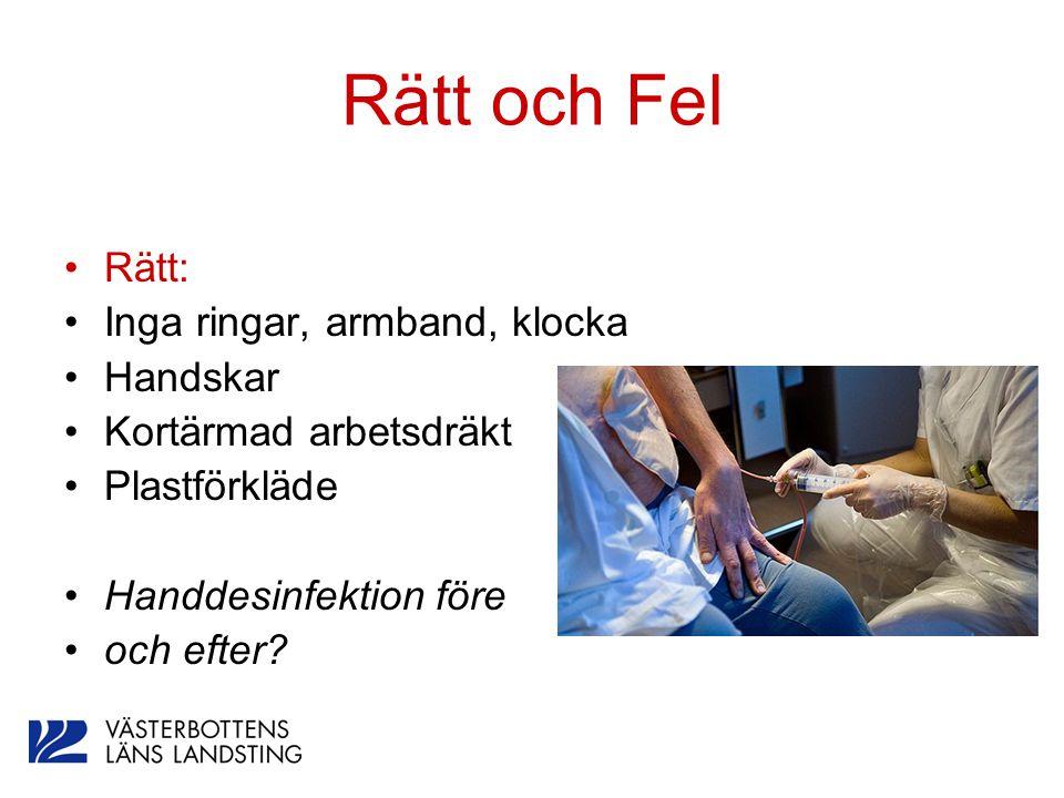 Rätt och Fel Rätt: Inga ringar, armband, klocka Handskar Kortärmad arbetsdräkt Plastförkläde Handdesinfektion före och efter?