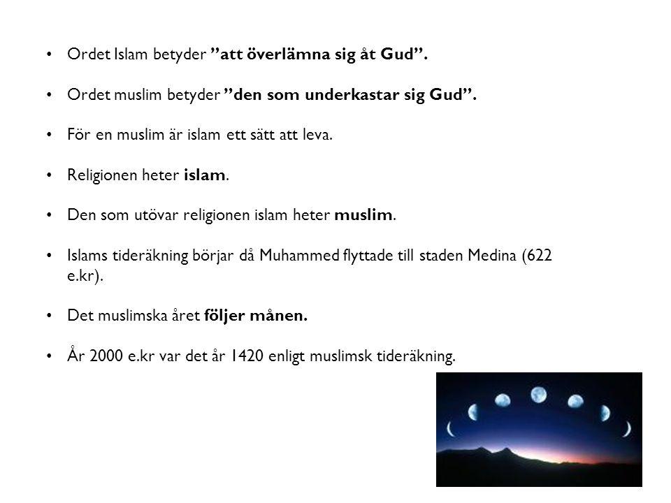 """Ordet Islam betyder """"att överlämna sig åt Gud"""". Ordet muslim betyder """"den som underkastar sig Gud"""". För en muslim är islam ett sätt att leva. Religion"""