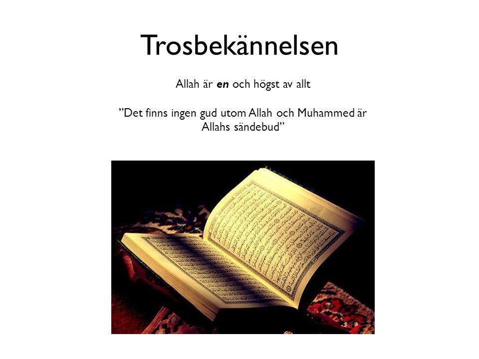 """Trosbekännelsen Allah är en och högst av allt """"Det finns ingen gud utom Allah och Muhammed är Allahs sändebud"""""""