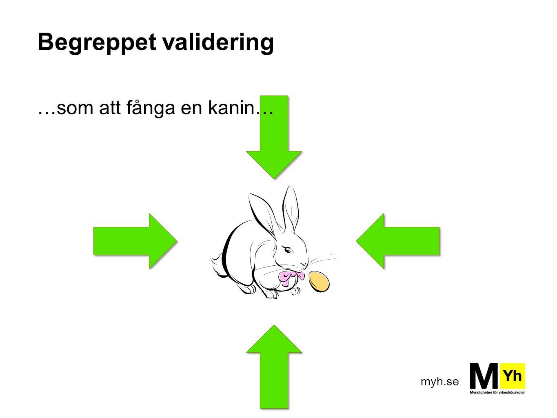 myh.se Begreppet validering …som att fånga en kanin…