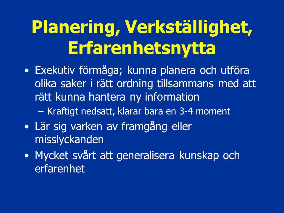 Planering, Verkställighet, Erfarenhetsnytta Exekutiv förmåga; kunna planera och utföra olika saker i rätt ordning tillsammans med att rätt kunna hante
