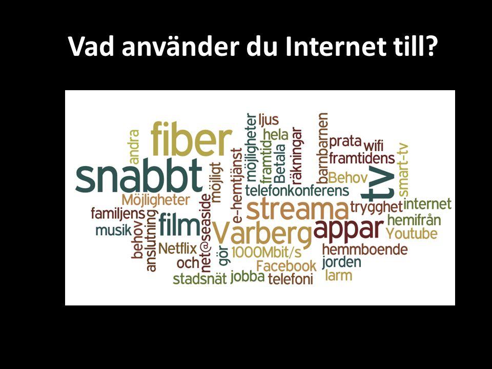 Vad använder du Internet till?