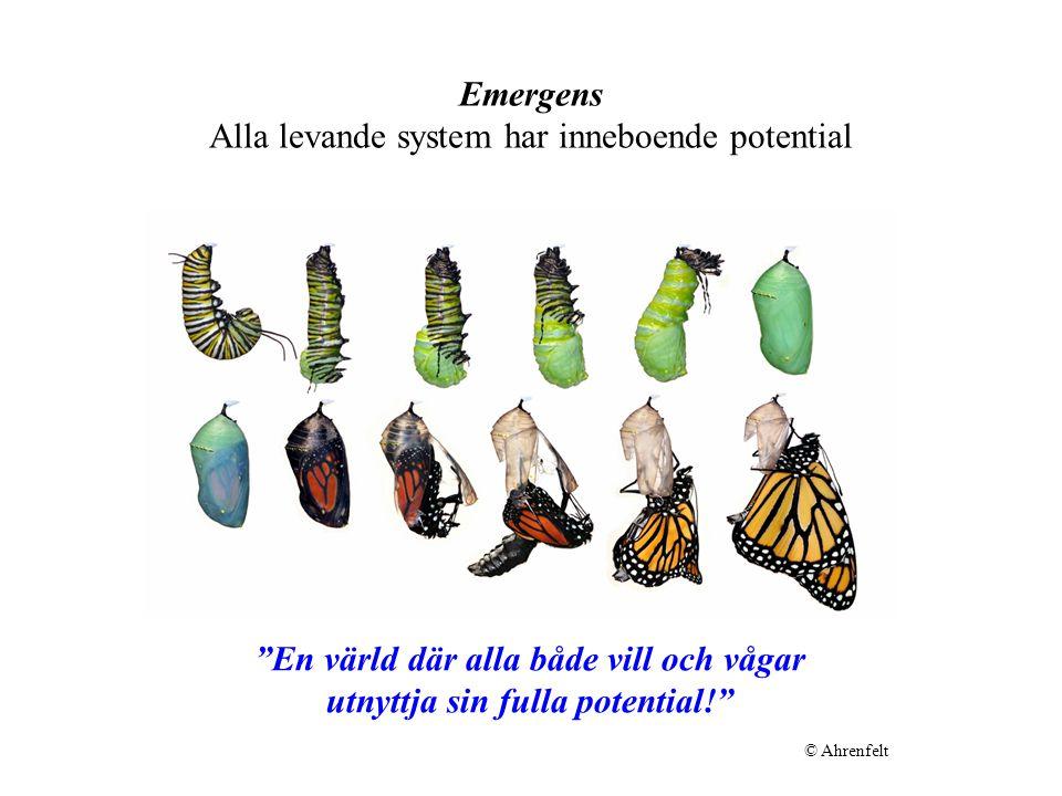 Emergens Alla levande system har inneboende potential En värld där alla både vill och vågar utnyttja sin fulla potential! © Ahrenfelt