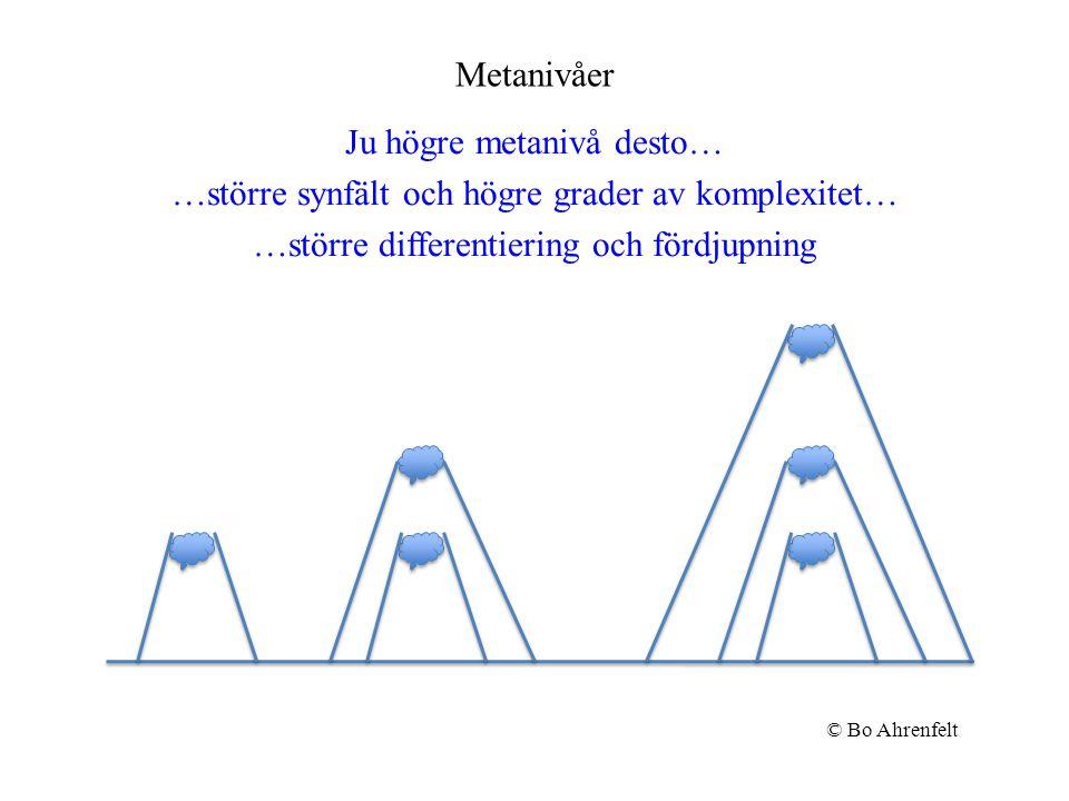 Metanivåer Ju högre metanivå desto… …större synfält och högre grader av komplexitet… …större differentiering och fördjupning © Bo Ahrenfelt