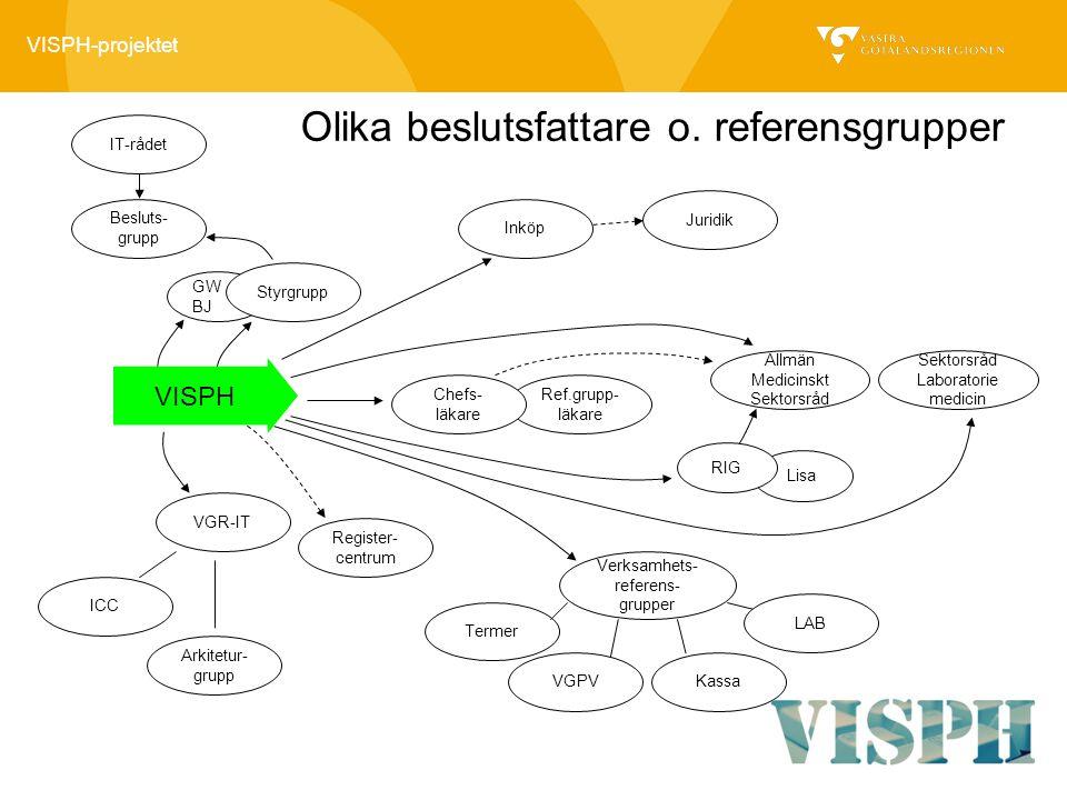 VISPH-projektet Lisa Ref.grupp- läkare GW BJ Styrgrupp Besluts- grupp Inköp Juridik Chefs- läkare VGR-IT ICC Arkitetur- grupp Register- centrum Verksa
