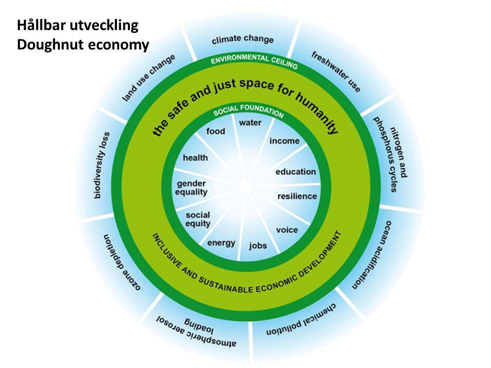 Livsstil, konsumtion & resurser Integration, resursfördelning & mänskliga rättigheter Energi & klimat Biologisk mångfald, miljö & avfall Biologisk mångfald, miljö & avfall Hållbar utveckling Doughnut economy