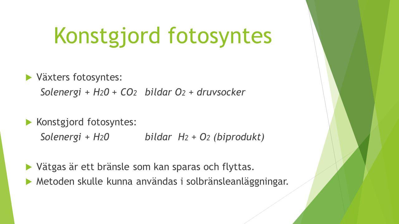 Konstgjord fotosyntes  Växters fotosyntes: Solenergi + H 2 0 + CO 2 bildarO 2 + druvsocker  Konstgjord fotosyntes: Solenergi + H 2 0 bildar H 2 + O