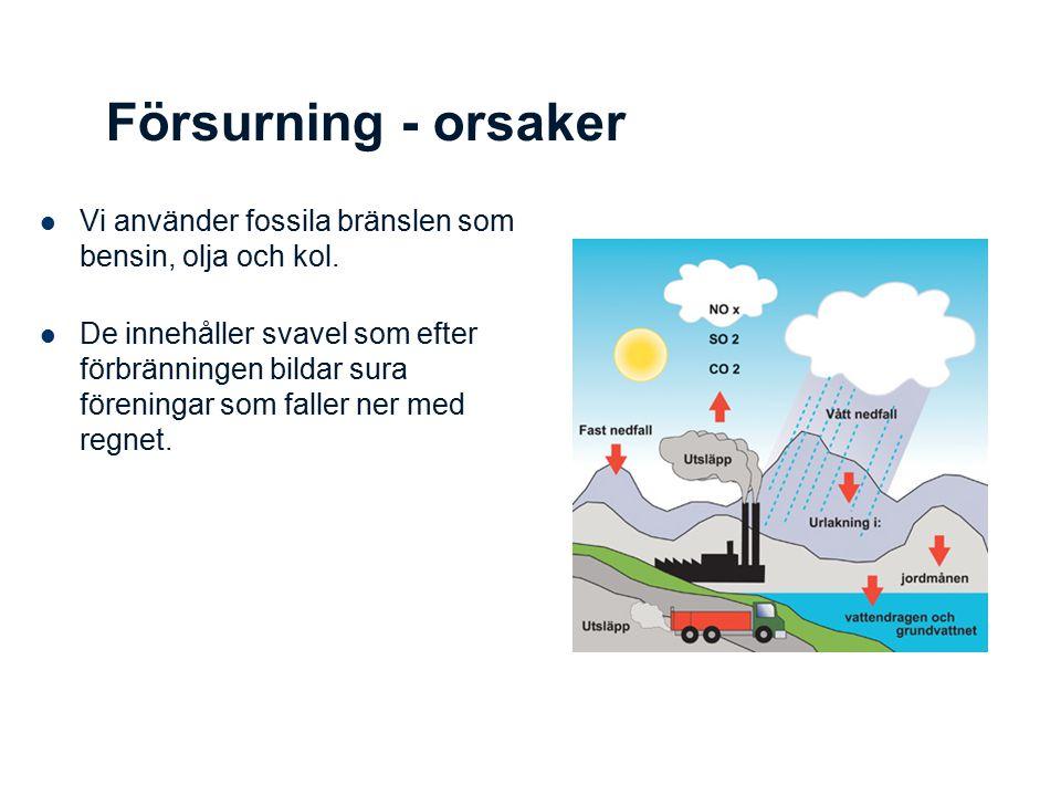 Försurning - orsaker Vi använder fossila bränslen som bensin, olja och kol. De innehåller svavel som efter förbränningen bildar sura föreningar som fa