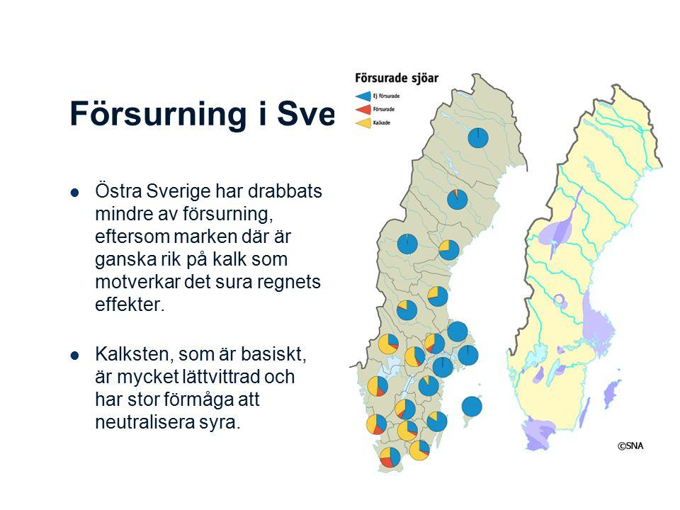 Försurning i Sverige Östra Sverige har drabbats mindre av försurning, eftersom marken där är ganska rik på kalk som motverkar det sura regnets effekter.