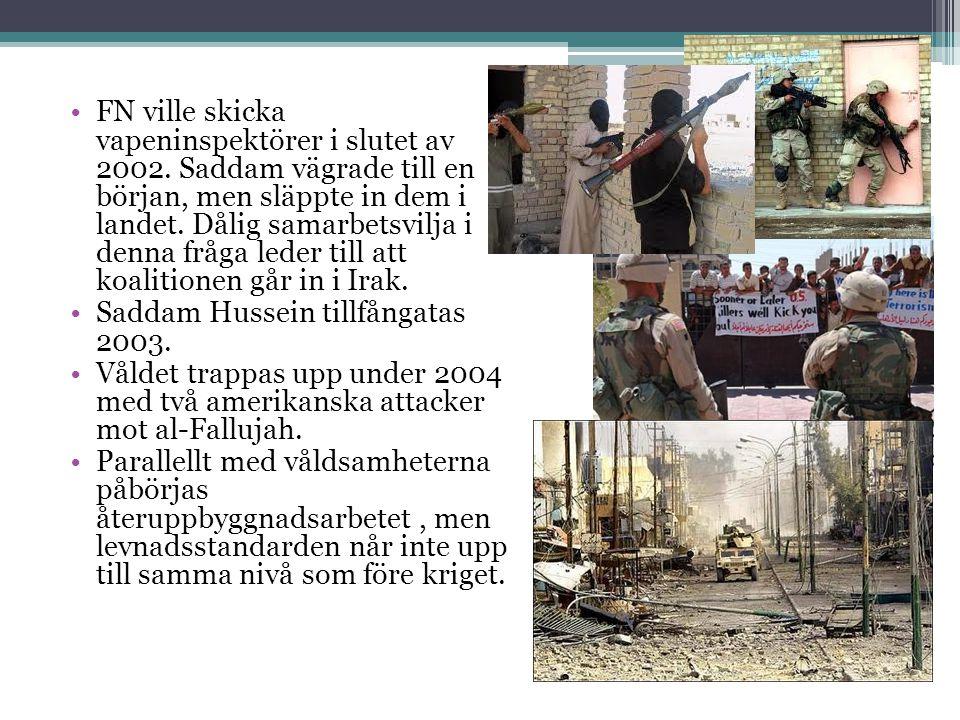 FN ville skicka vapeninspektörer i slutet av 2002.