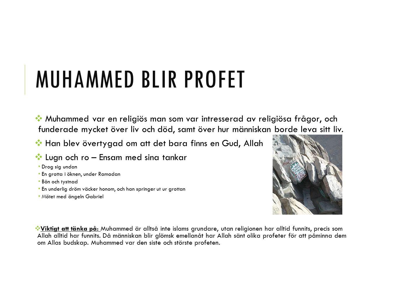 MUHAMMED BLIR PROFET ❖ Muhammed var en religiös man som var intresserad av religiösa frågor, och funderade mycket över liv och död, samt över hur männ